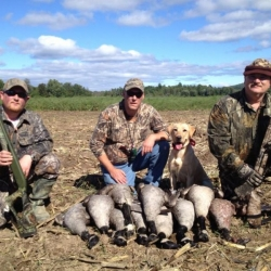 goose-hunting-ny-eastern-view-outfitters_2